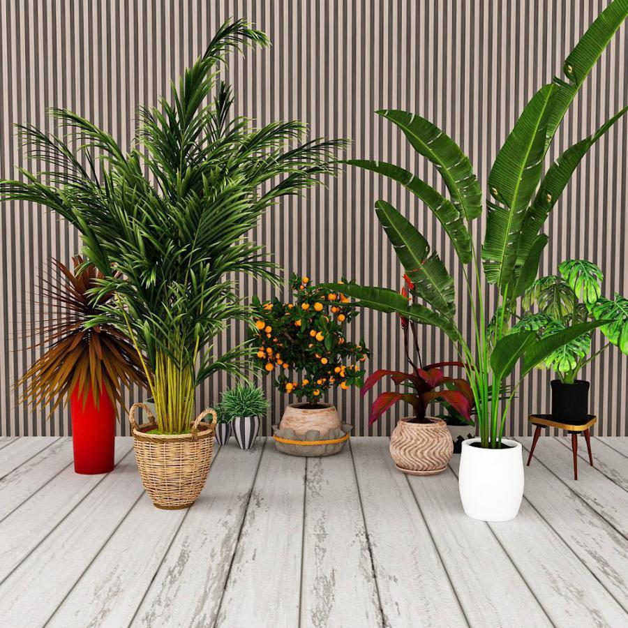 现代植物类盆栽组合模型